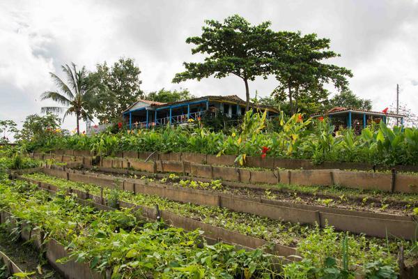 Resultado de imagen para site:www.acn.cu manejo sostenible de la tierra