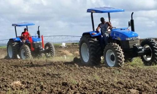 Varias tecnologías de productos agrícolas y evaluaciones de variabilidad genética caracterizaron algunos de los resultados científicos, en 2016, de entidades del Ministerio de la Agricultura de Cuba.