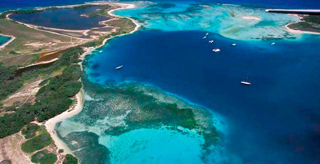 Sampling of Caribbean Waters Published on Website