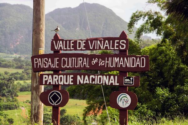 0802-vinales2.jpg