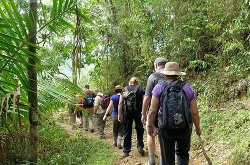 Resultado de imagen para site:www.acn.cu Guamuhaya