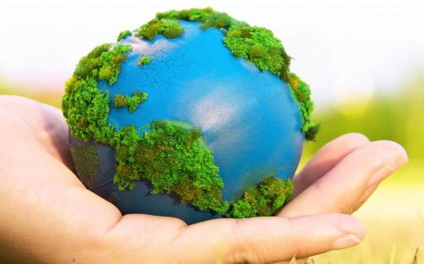 Lamentan ONG que la protección al medio ambiente no sea prioridad
