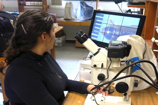 Alta aceptación de estudios digitales de imágenes en hospitales y centros científicos cubanos
