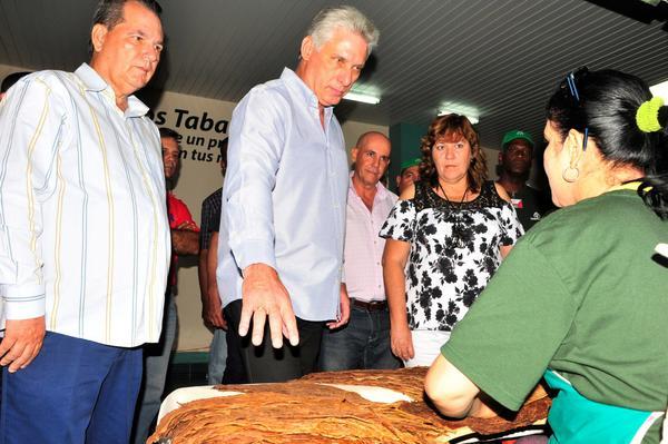 Miguel Díaz-Canel Bermúdez (C), miembro del Buró Político del Comité Central del Partido Comunista de Cuba y Primer Vicepresidente de los Consejos de Estado y de Ministros, intercambió con obreros de un centro de procesamiento, clasificación y distribución de capas de tabaco, en Cabaiguán, territorio destacado del país en la producción de la hoja, en Sancti Spíritus, Cuba, el 24 de noviembre de 2017. ACN FOTO/Vicente BRITO/Periódico Escambray