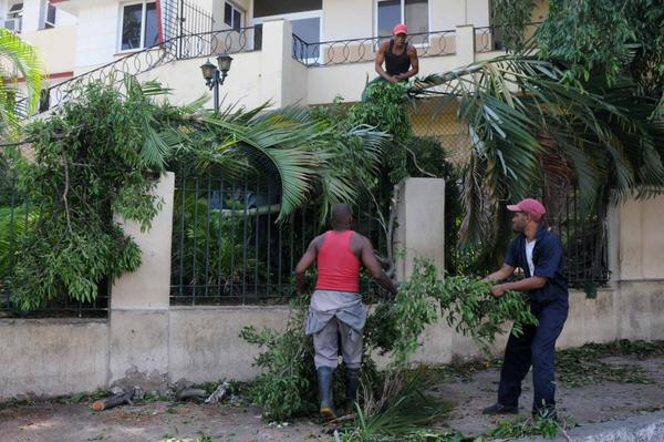 Hurricane Irma: Severe damages to Cuban agriculture