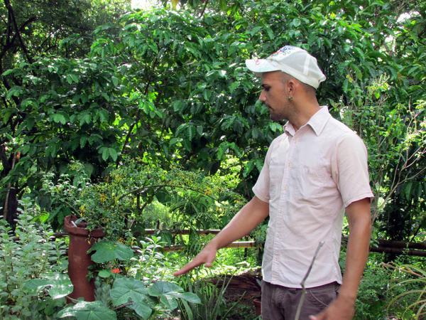 Jansel García Ruiz, promotor cultural del grupo de Teatro de los Elementos, en la comunidad El Jobero del municipio de Cumanayagua, muestra algunas plantas medicinales con la técnica agrícola de la permacultura,en Cienfuegos, el 14 de septiembre de 2017 ACN FOTO/ YULIET SÁEZ
