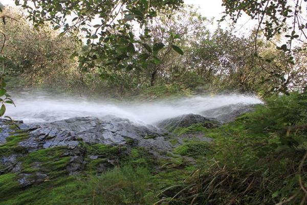 De las más de 100 mil hectáreas de la valiosa área de escurrimiento, alrededor de 37 millares están amparados dentro del Parque