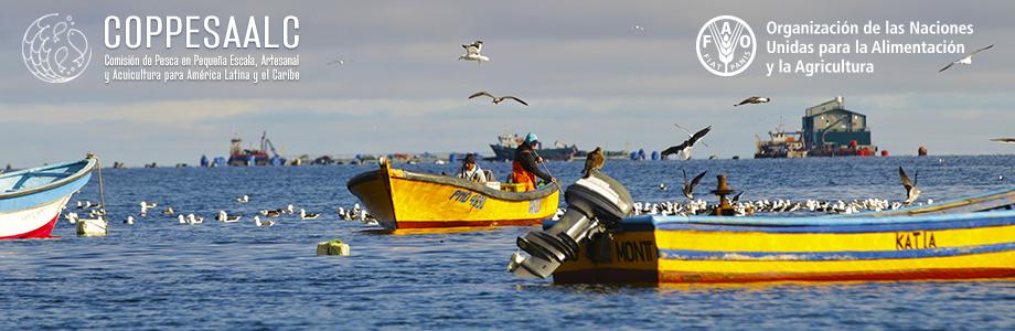 Analizarán en Cuba retos de la pesca región latinoamericana y caribeña