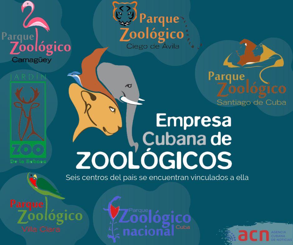 Empresa cubana de Zoológicos comprometida con el bienestar de los animales