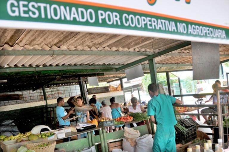 Muestra elementos positivos en Cuba la gestión de Cooperativas No Agropecuarias