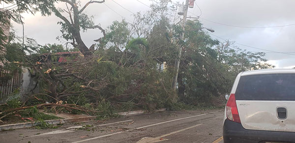0128-afectaciones-tornado1.jpg