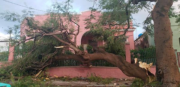 0128-afectaciones-tornado2.jpg
