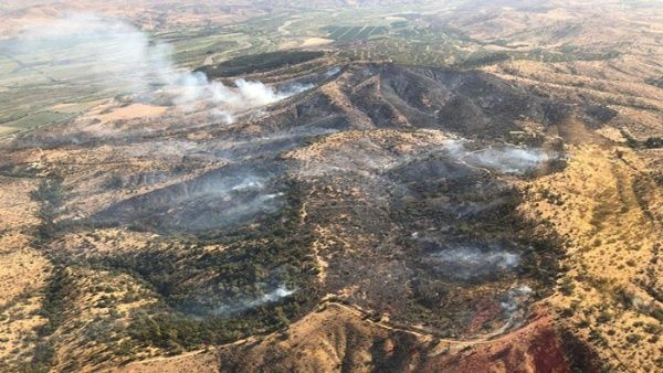 0129-chile-incendio-forestal1.jpg