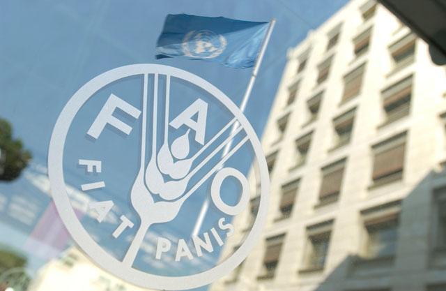 Cuba attends FAO council session