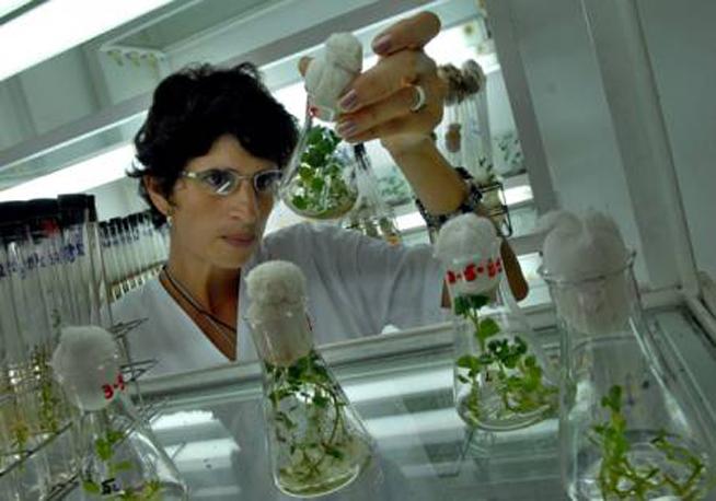 Comienza en Cuba taller científico sobre la producción de alimentos