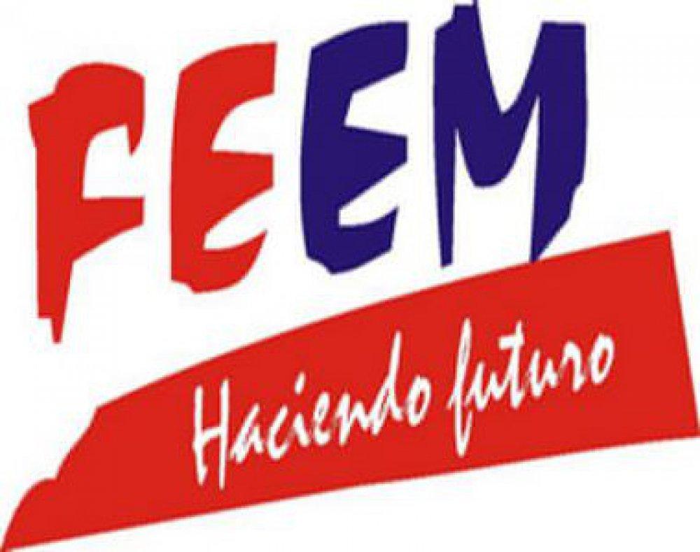 Sesiona hoy plenaria del Consejo Nacional de la FEEM