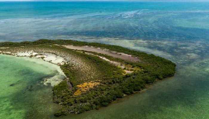 Avanza la recuperación de zonas litorales de Camagüey en respuesta al cambio climático