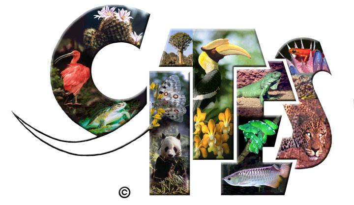 Animales cubanos serán protegidos por Convención internacional CITES