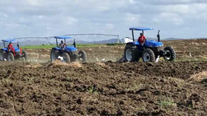 Consejo de Defensa chequea campaña de siembra de frío y otros temas de interés en Camagüey