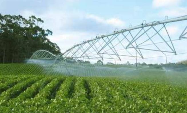 Validan desde Camagüey tecnología que ahorra agua en sistema de riego