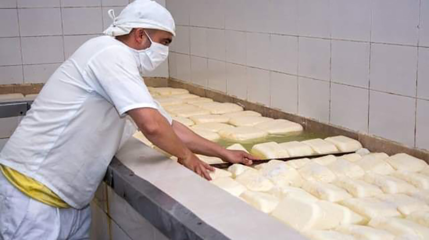 Dairy Products Company maintains exports despite COVID- 19