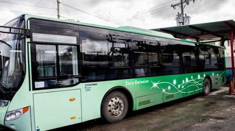 0104-omnibus.jpg