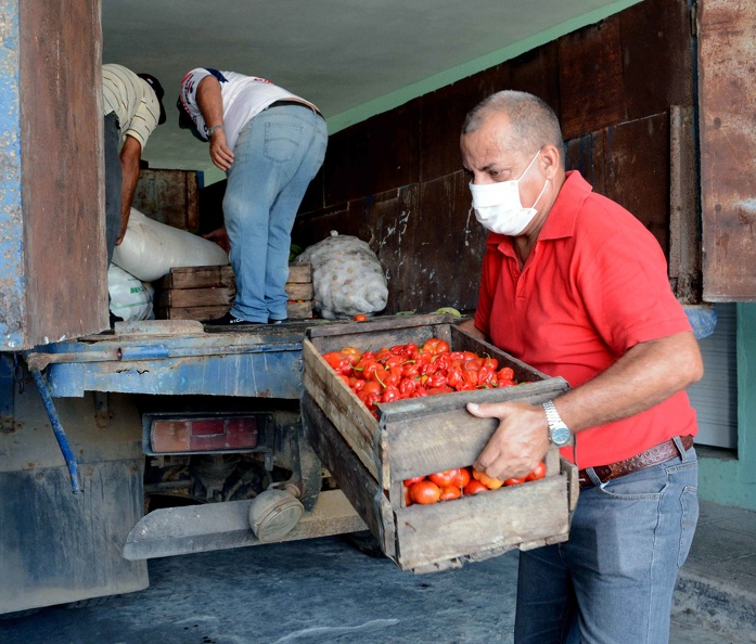 Farmers in Holguín boost food production before COVID-19