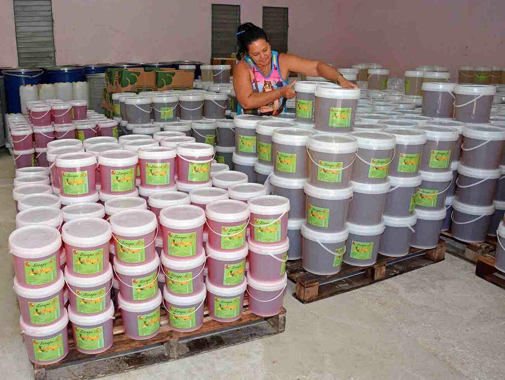 Proyectos de desarrollo local en Camagüey impactan la producción de alimentos