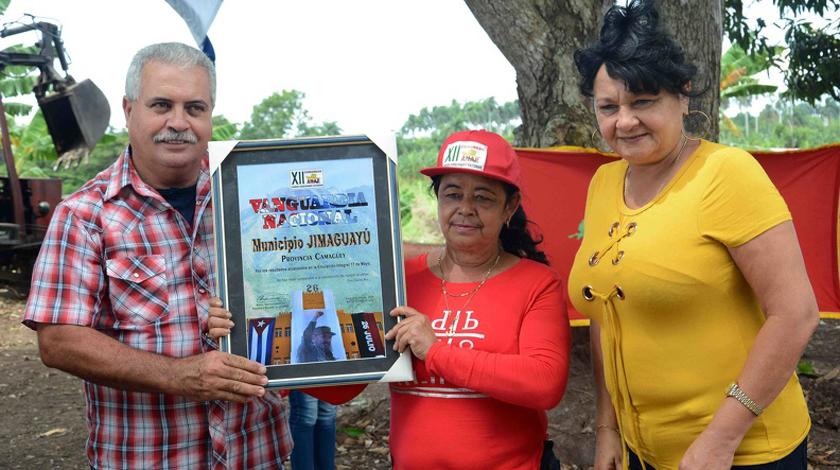Jimaguayú una vez más vanguardia de la ANAP en el país