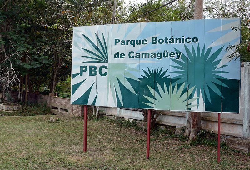 Avanza en Camagüey proyecto para el manejo sostenible de mariposas diurnas