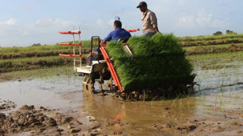 Sistema de la agricultura en Cuba mejorará riego, mecanización y abasto de agua