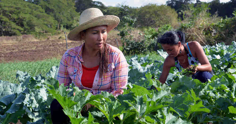 2311-mujeres-agricultura-rbc.jpg