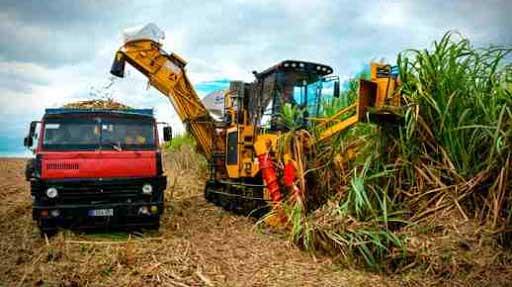 Servicios técnicos industriales apuesta por una industria azucarera revitalizada