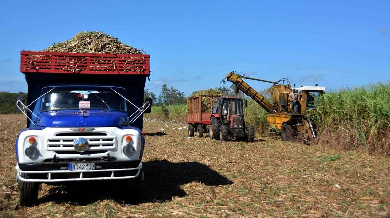 Zafra azucarera en Cuba recibe impactos negativos del bloqueo de Estados Unidos
