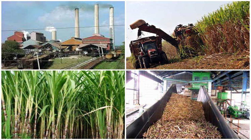Innovative technological contributions to sugar products and by-products CUBANEW/ACN