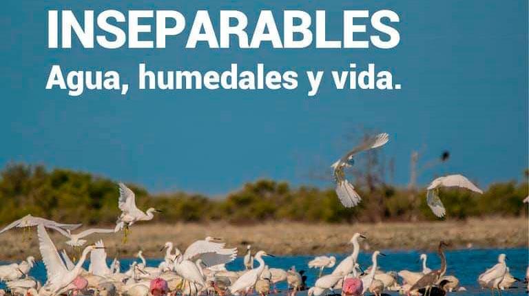 Día Mundial de los Humedales: 50 años preservando los ecosistemas cubanos