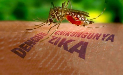 Work Places Get Fined for Lack of Control against Mosquitoes