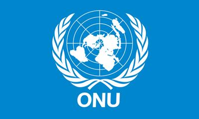 Defiende Cuba en Ginebra derecho humano a la privacidad